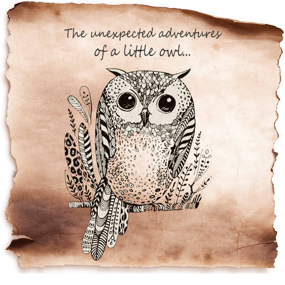 The hot little owl